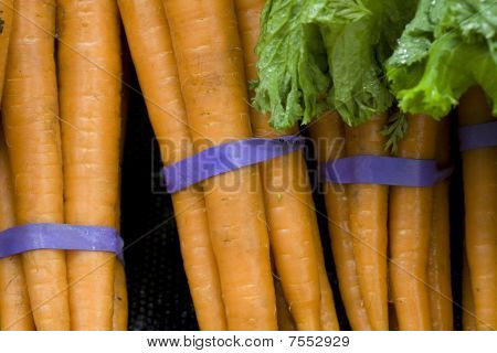 Bunches of carrots.
