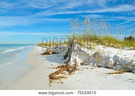 Beautiful Florida Coastline
