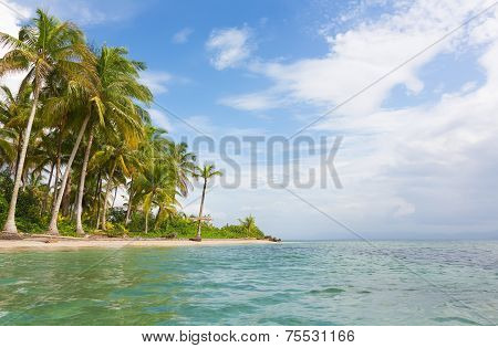 Starfish beach, Bocas del Toro, Panama