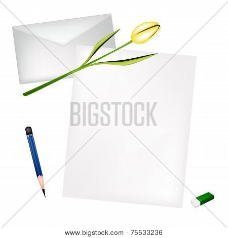 Yellow Tulip on Blank Page and Envelope