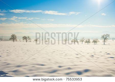 Vintage Winter Picture