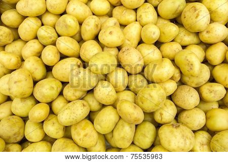 Background with potatoes