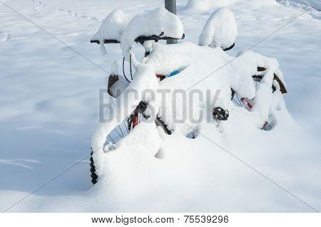 Winter Wonder Land - Snow Bicycle