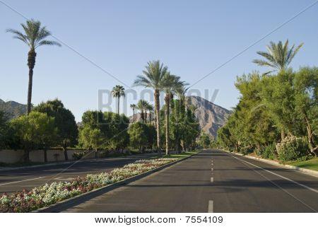 Indian Wells Roadway