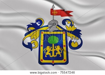 Flag of the Coat of Arms of the State of Guadalajara , Mexico