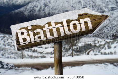 Biathlon wooden sign with a snow background