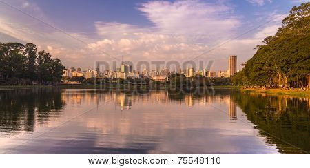 Amazing view of Sao Paulo city from Ibirapuera Park, Brazil - Latin America