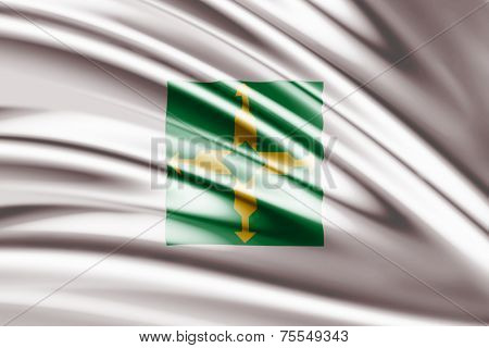 Amazing Flag of Distrito Federal Brazil