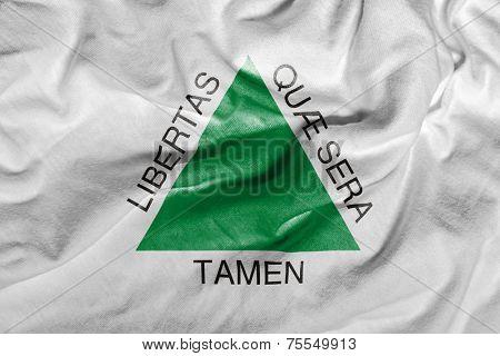 Amazing flag of the State of Minas Gerais , Brazil