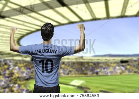 Uruguayan fan celebrates on the stadium