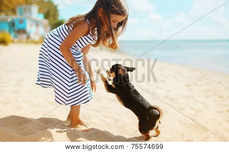 Child And Dog Playing On The Beach In Summer Day