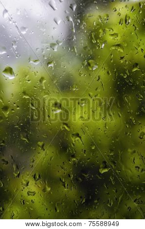 Storm Glass Pane