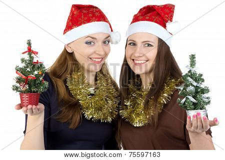 Photo of two women with christmas fir tree