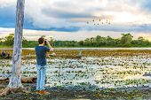 picture of wetland  - Tourist looks the Pantanal area - JPG
