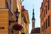 pic of olaf  - Tallinn in Estonia - JPG