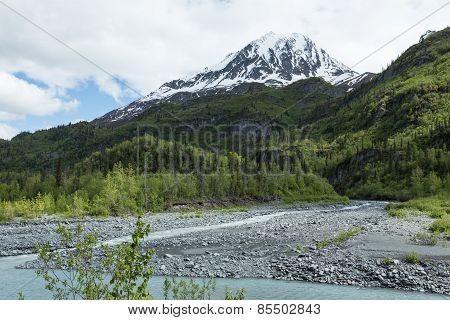 Lush Alaska