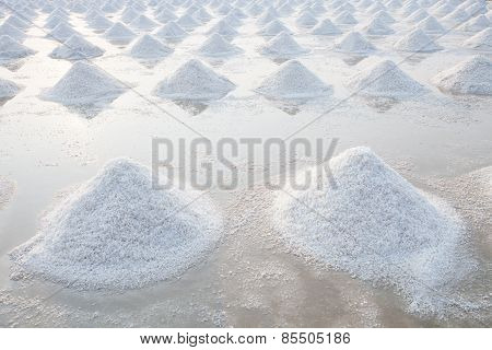 Heap Of Sea Salt In Original Salt Produce Farm Make From Natural Ocean Salty Water Preparing For Las