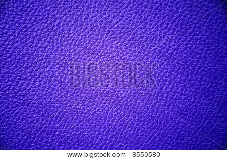 Leather Texture Detail