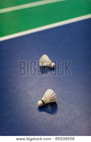 Badminton - badminton courts with two shuttlecocks (shallow DOF; color toned image)