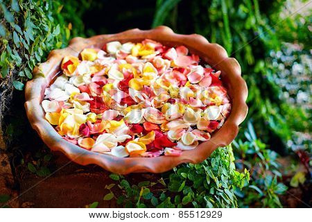 Fresh Rose Petals In Water Bowl, Summer Garden