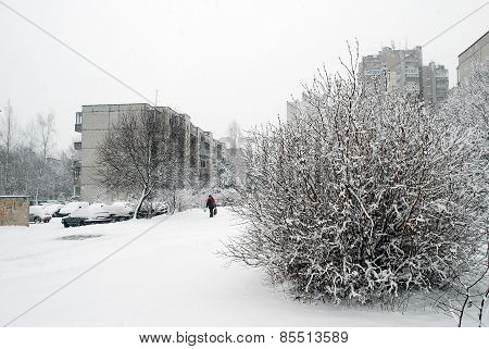 Winter Snowfall In Capital Of Lithuania Vilnius City Seskine District