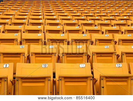 Yellow folding chairs lined on the stadium sport