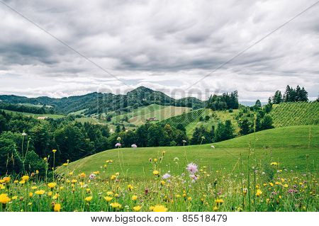 Landscape in Styria