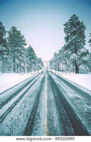 Icy Winter Road