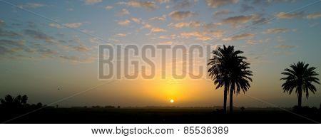Sunrise in the Iraqi countryside