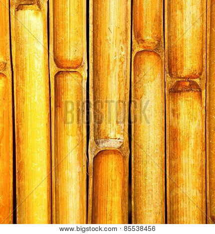 Thailand Abstract Cross Bamboo In The Temple Kho Phangan