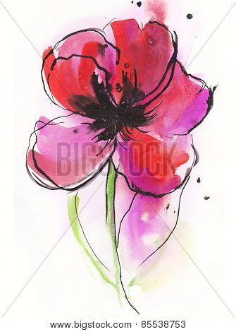 watercolor illustration with stylized red poppy flower