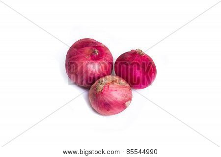 Shallot, Red Onions On A White Background