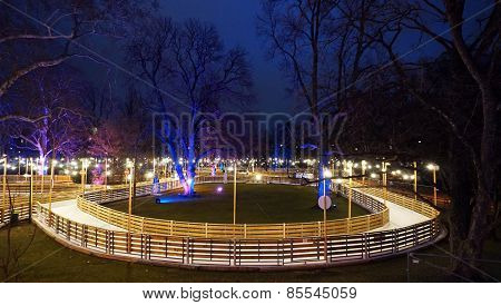 Ice Rink In The Park
