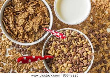 Cereal flakes with milk for breakfast.