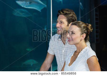 Couple looking at fish in tank at the aquarium