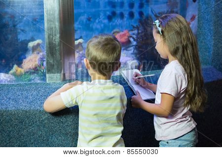 Cute siblings looking at fish tank at the aquarium