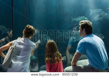 Family looking at fish tank at the aquarium