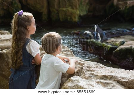 Little siblings looking at penguins at the aquarium