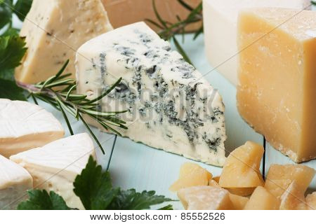 Slice of gorgonzola cheese with herbs and other cheeses