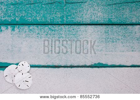 Blank wooden sign with sand dollars border