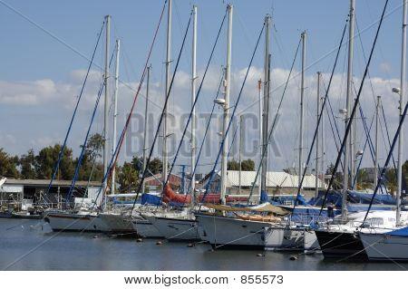 yachts in marine
