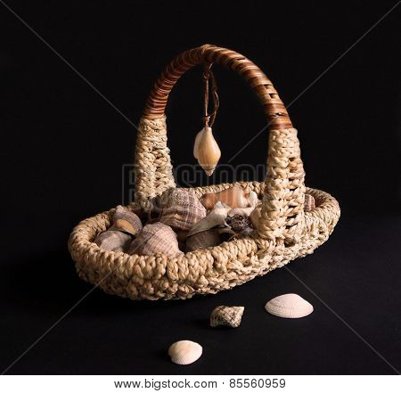 Basket with shells