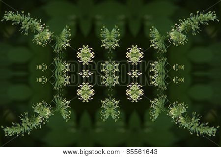 Plant pattern background