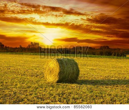 Hay Bale on the field at sunset