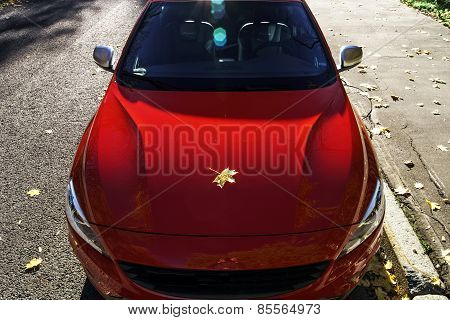 Beautiful Red Car Autumn View