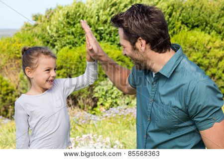 Father and daughter high fiving in the countryside