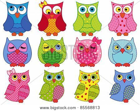 Set Of Twelve Colourful Cartoon Owls