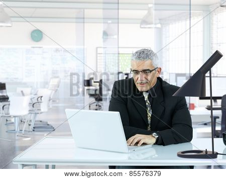 Senior businessman sitting in modern office, working with laptop computer.