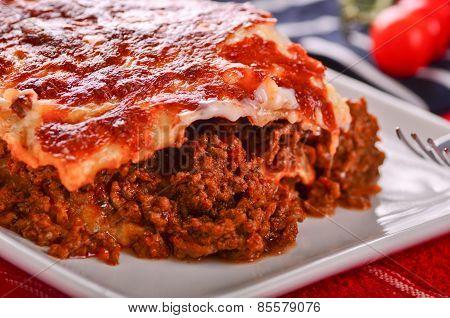 Fresh Home Made Lasagna