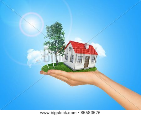 White shack in hand with red roof and chimney. Background sun shines brightly on left